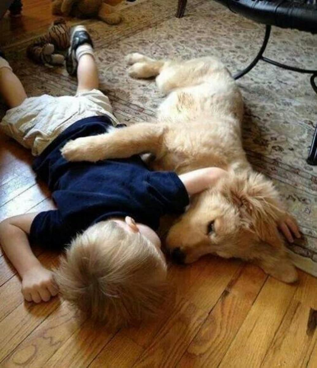 2aa7436e110454 Kids Love Animals – Page 8 – Freekibble